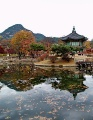 Thumbnail for post: The LKL Korea Trip 2009 – reflections