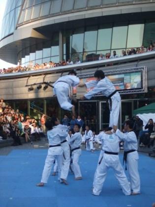 Taekwondo 4