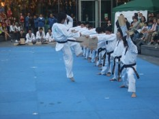 Taekwondo demo - the big kick 2