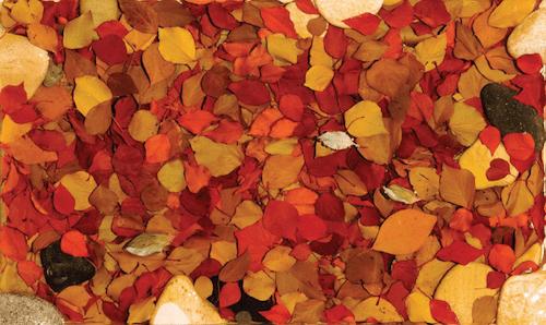 Kim Yeon - Autumn Leaves