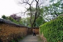 Namsa-ri walls
