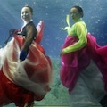 Thumbnail for post: Hanbok designs by Park Sul-nyeo in aquarium fashion shoot