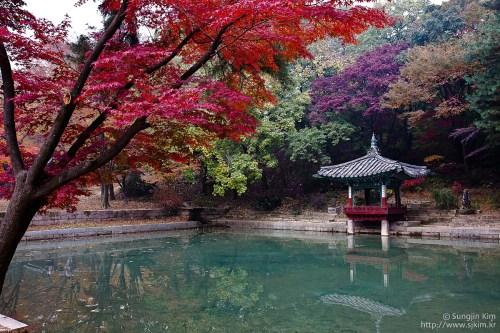 Kim Sung-jin: the Secret Garden
