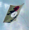 Thumbnail image for Korean Fighting Kites – part 1