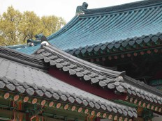 Changdeokgung roofscapes: the blue roof of the Seonjeongjeon