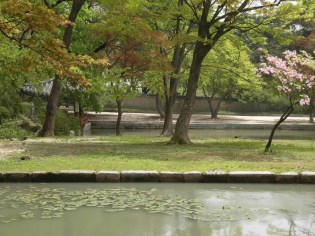 The Aeryeonjeong pavilion and Aeryeonji pond with, in foreground, the Yeonji pond
