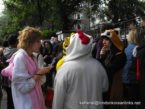 Fans in costumes