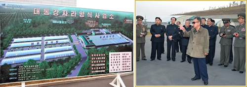 Kim Jong-il visiting the Taedonggang Terrapin farm in October 2011