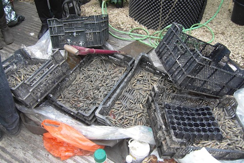 Spent cartridges will provide some of the detail in the garden