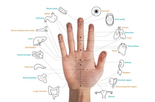 Korean hand acupuncture chart