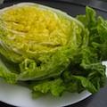 kimchi-cabbage