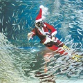 Thumbnail for post: Sardine Santa at the COEX Aquarium