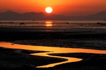 Image credit www.suncheonbay.go.kr
