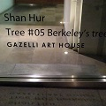 Thumbnail for post: Berkeley's Tree – Hur Shan's installation in Berkeley Square