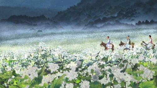Buckwheat Season