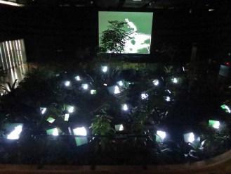 Paik Nam June: TV Garden, at the Paik Nam June Art Center, June 2014
