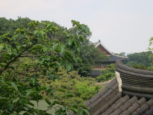 A view towards the Changdeok Palace from the upstairs balcony of the Tea Museum