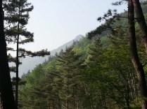 View of Pilbongsan from the slopes of Wangsan