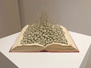 Jukhee Kwon: Sprouting (2019)
