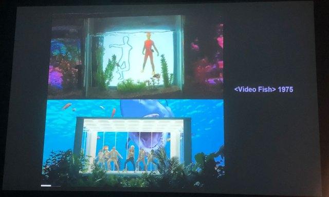 Video fish