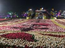 Taean Tulip Festival 2019