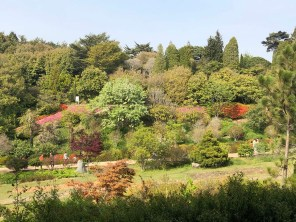 Anmyeondo arboretum