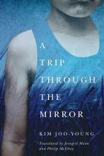 Thumbnail for post: A Trip Through the Mirror