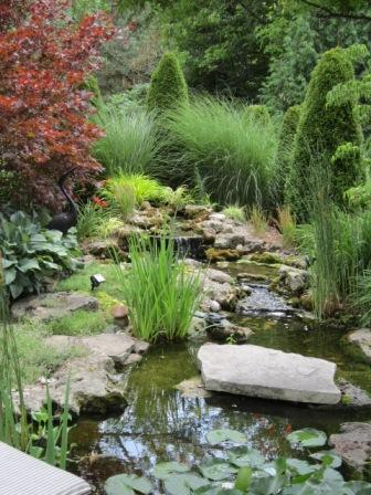 Planting a pond or water feature