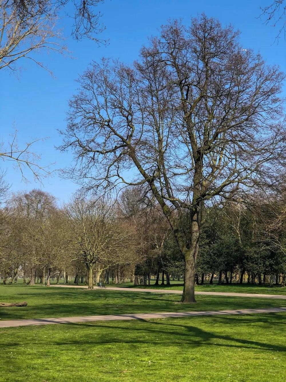 Best Parks in London - Victoria Park