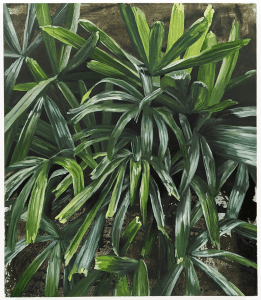 Juliet E P Gibbs, From the Glasshouse, 2021, Oil and acrylic on canvas, 62 x 71 cm, 24.4 x 28 in, © The Artist