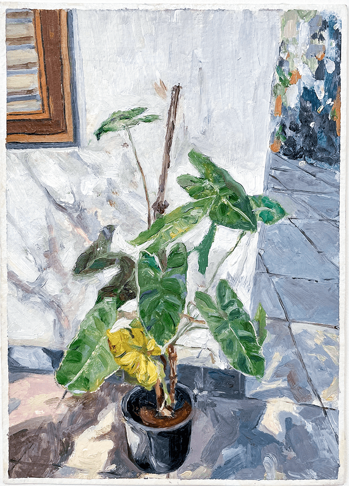 Nejal Mehta, By The Window, 2020, Oil on Watercolor Paper, 18 x 25 cm, £370, © The Artist