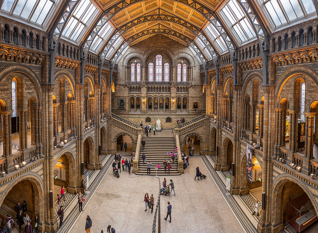 Natural History Museum. Foto: Creative Commons autor Chris Chabot