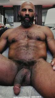 senior bear big black british cock