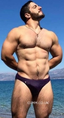 Budgie Smuggler speedo hairy muscle man