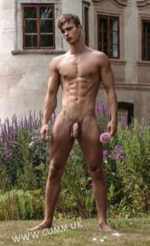 images of masculinity flowers soft pink cock