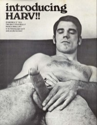 vintage-gay-porn-Harv-Hung-Studs-classically-handsome-male-model-with-a-nice-hard-cock-circa-1971-1