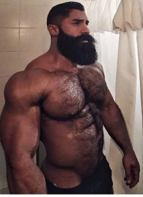 big-beefy-hairy-barechested-gall-ghy