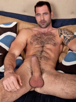 inked hairy erect