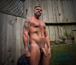 bear-art-hairy-hung