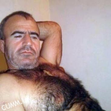hairy bellies hairy daddy