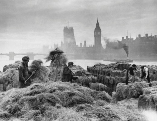 1750, England, UK --- A small group of men unloading esparto grass from barges at a wharf near Lambeth on the River Thames. The grass is used for making bank notes and stockings. The photo shows this rural scene on the banks of the Thames with Westminster Bridge, Houses of Parliament and Big Ben in the background. --- Image by © Hulton-Deutsch Collection/CORBIS