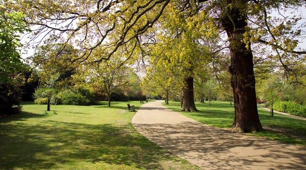 Spring in Greenwich Park