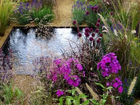 Water 'squares' garden