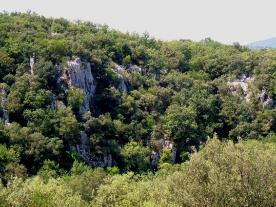 The Gorges of the Vidourle
