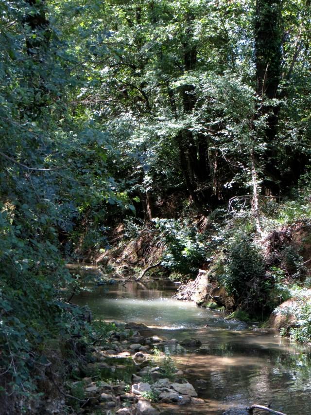 Crieuolon River