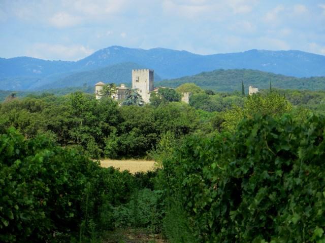 Chateau of Vibrac