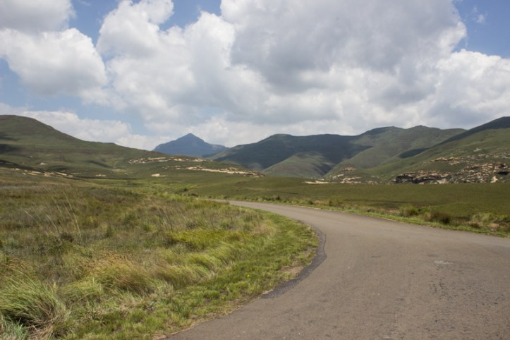 The start of the Blesbok Loop Drive