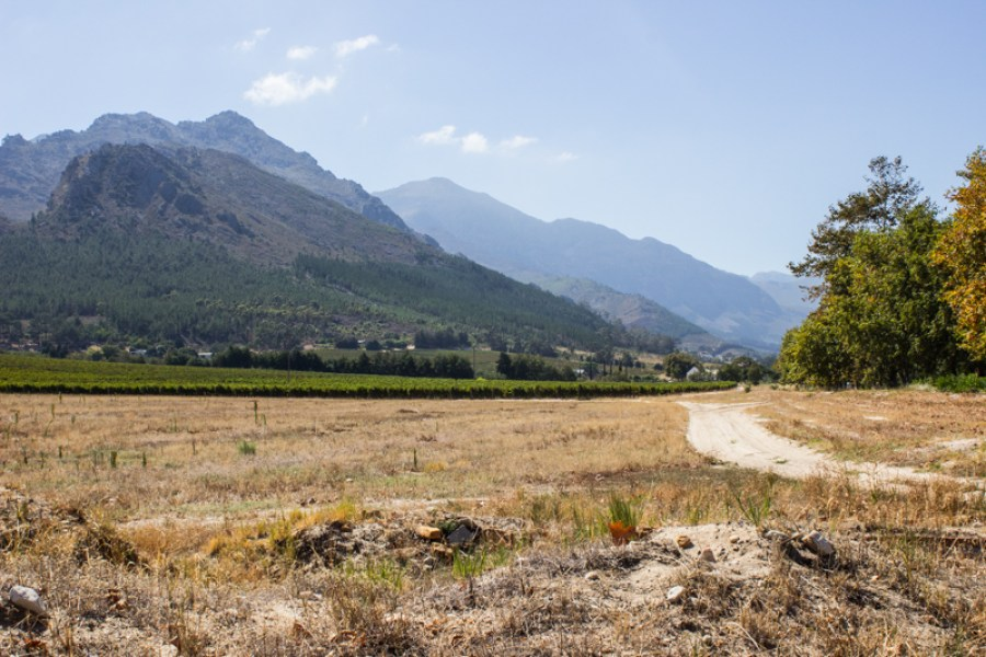 The trail through the vineyards at La Motte