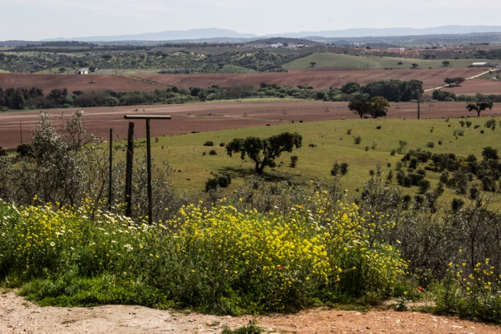 The view over the Alentejo from outside the Castle of Terena