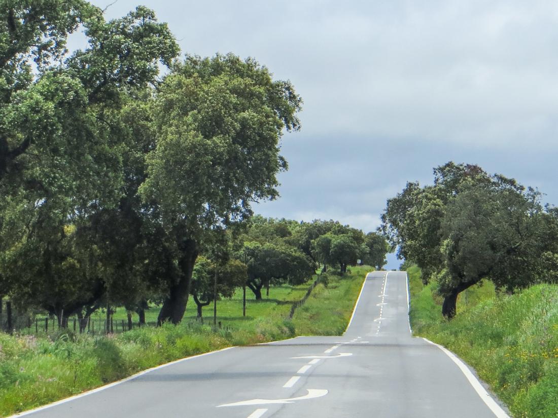 The road between Arronches & Monforte